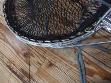 タモ網(クラゲ用)
